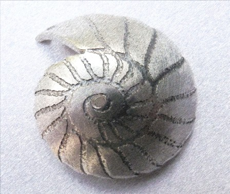 'Fossils in Silver' Pendant - raised design element
