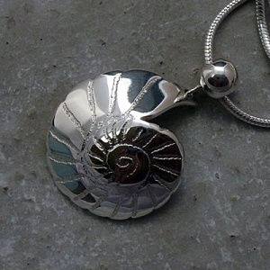 'Fossils in Silver' Plain Sterling Silver Pendant